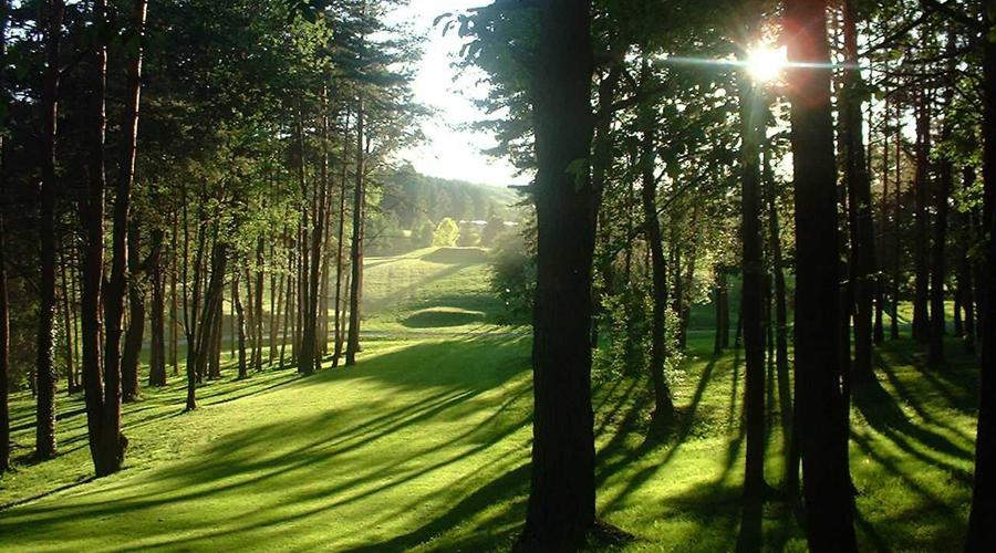swing-golf-montenois