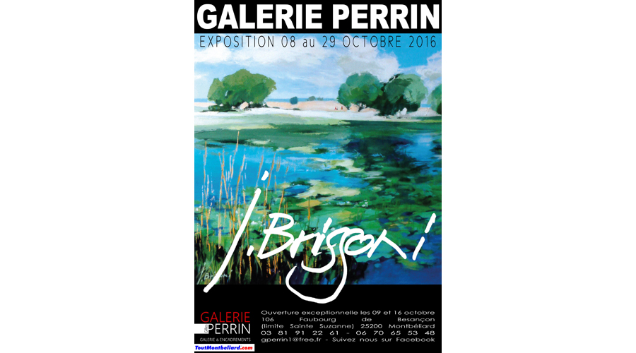 galerie-perrin-201610
