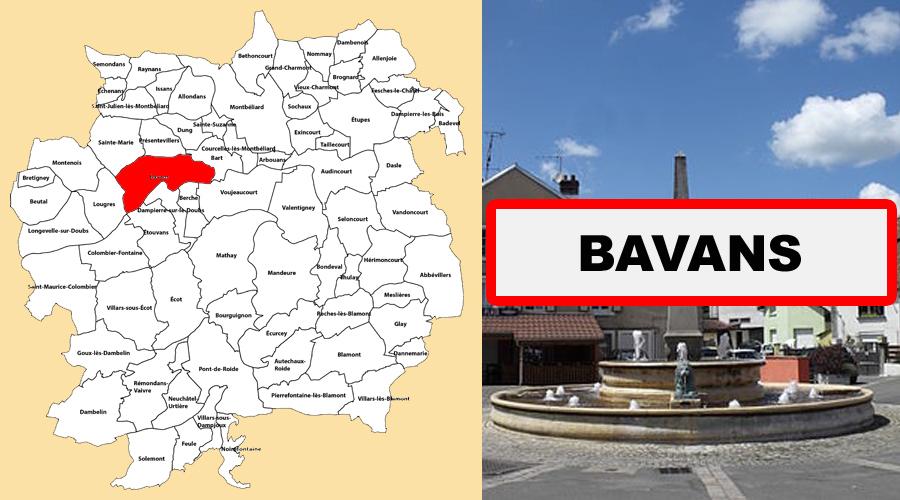 bavans
