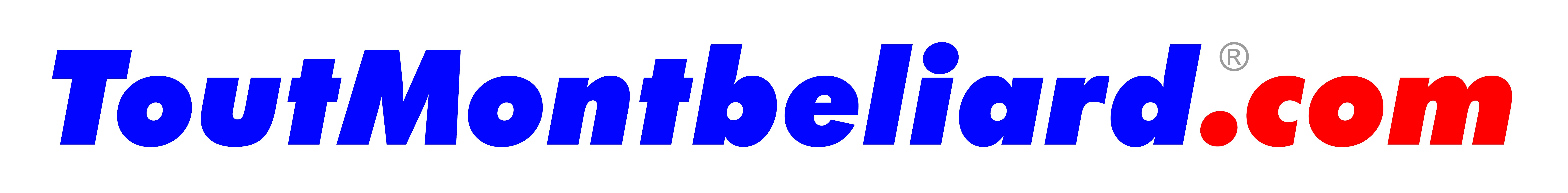 ToutMontbeliard -logo-long