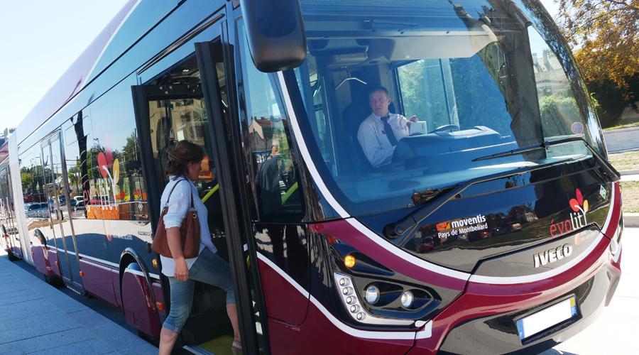 bus-evolity