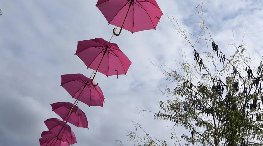 octobre-rose-parapluies