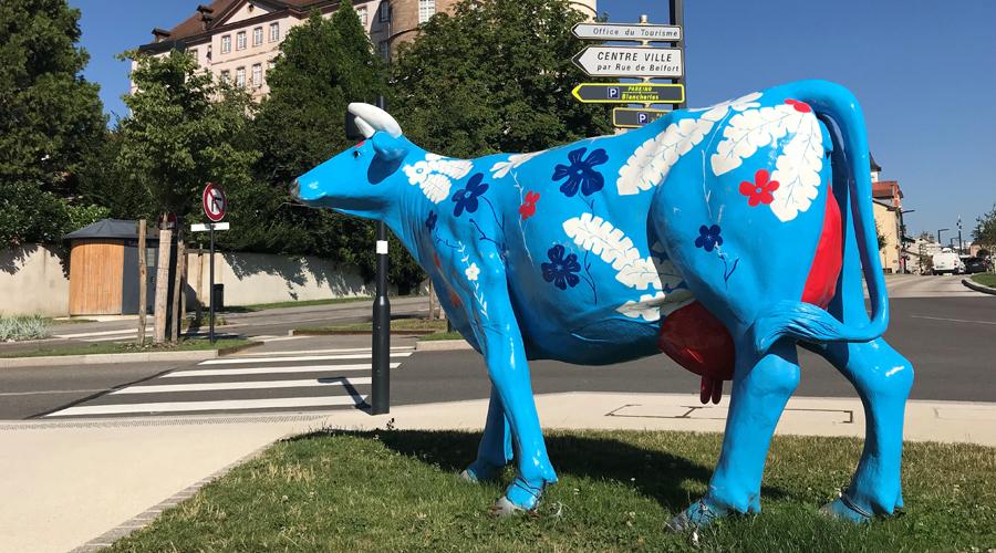 tourisme vache