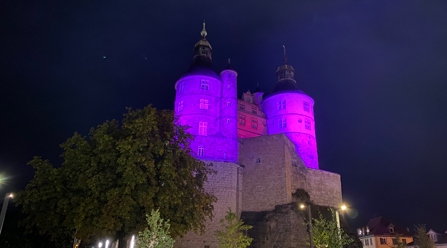 chateau-montbeliard-rose