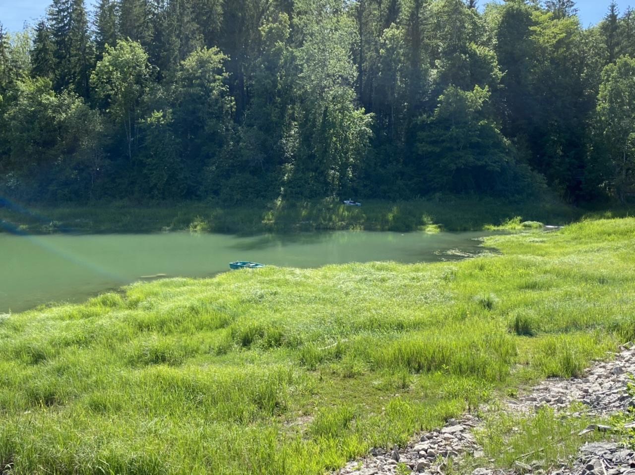Nature étang lac